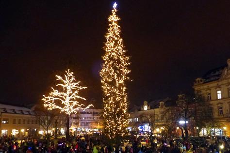 Vánoční strom rozsvítí ve Vsetíně v pondělí  45bf8302f6